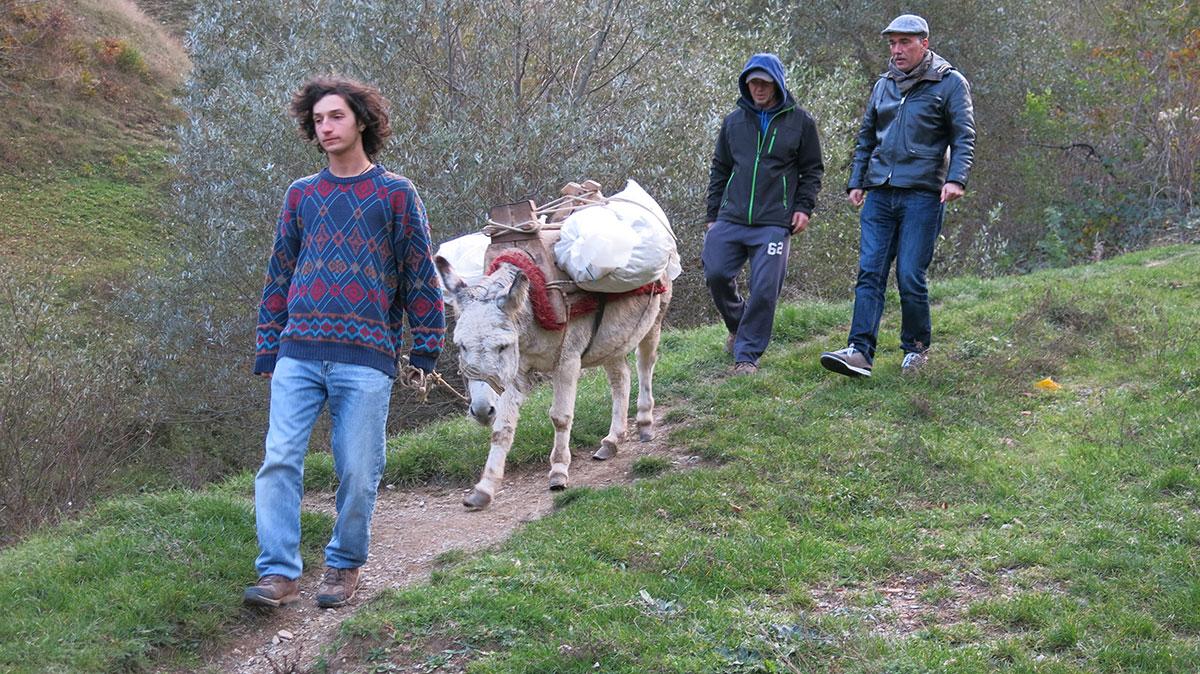 Lepi Brka u Makedoniji