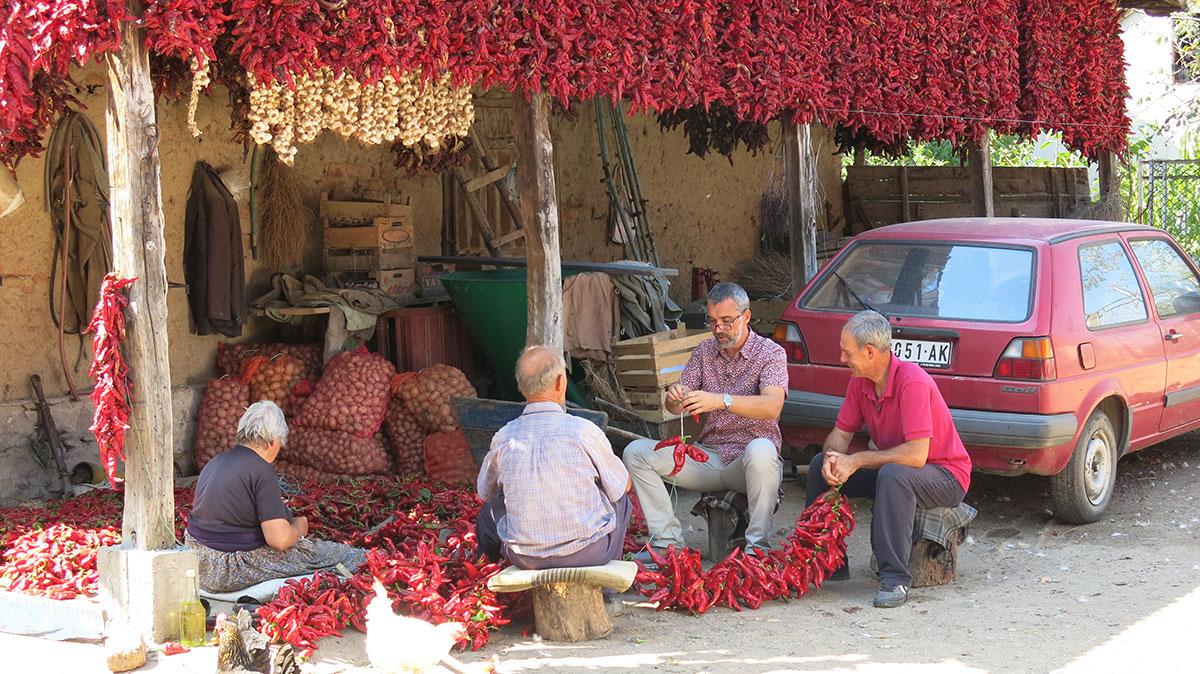 Moba nizanja začinske paprike u selu Donja Lokošnica kod Leskovca