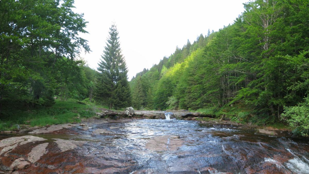 Arbinje i Dojkinačka reka, foto: Uroš Nedeljković