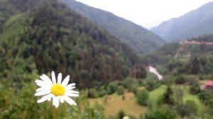 Kavkaz, Gruzija, Svaneti - Foto: Uroš Nedeljković