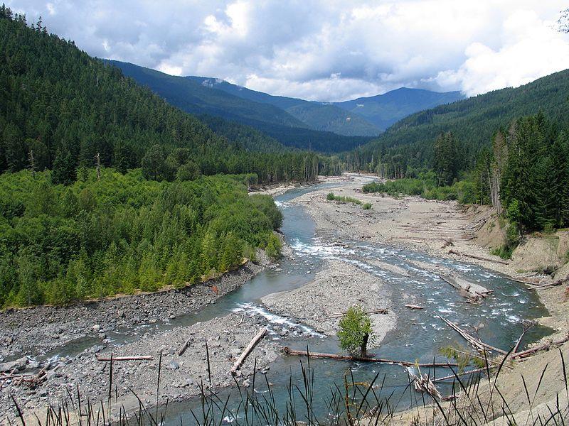 U reku Elva su vratile dve vrste riba nakon uklanjanja brana