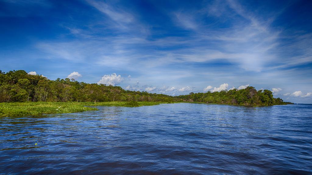 Većina reka dužih od 966 kilometara nalazi u udaljenim delovima Arktika i basenima Amazona i Konga