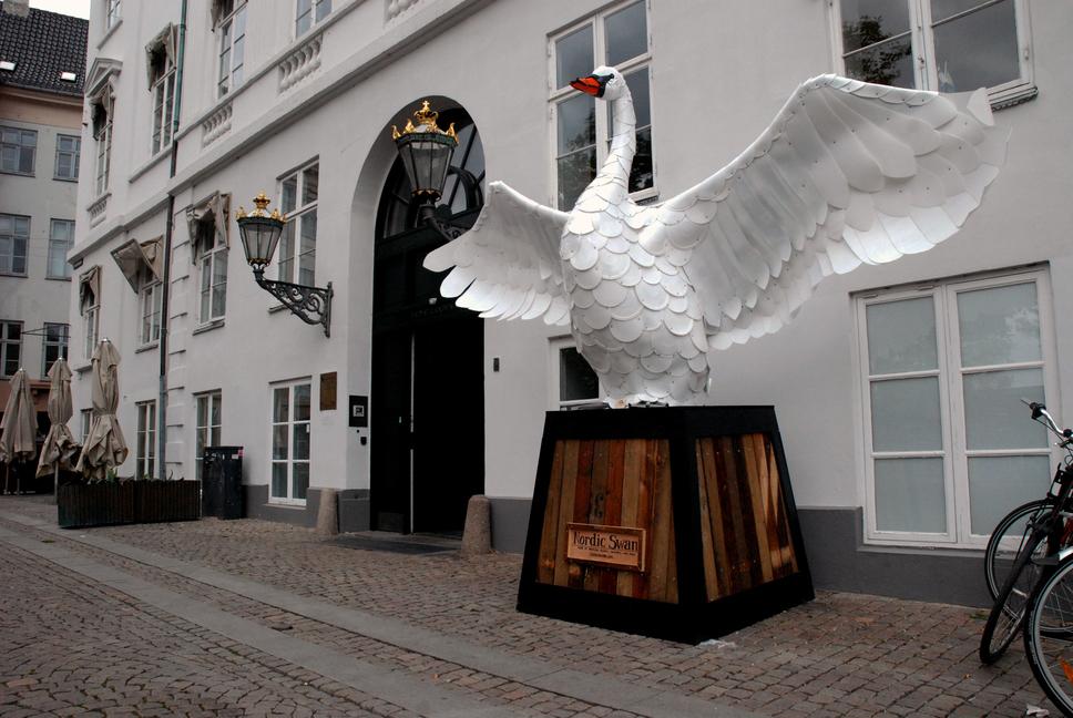 Nordijski labud
