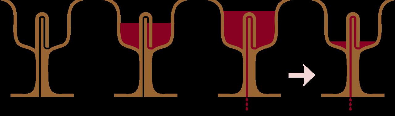 Pitagorina čaša