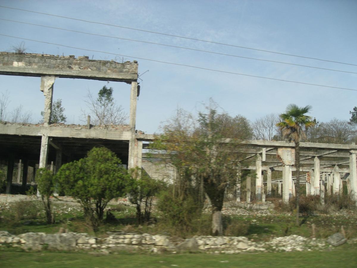 Uništena fabrika čaja, mladice čaja rastu svud okolo i iz betona
