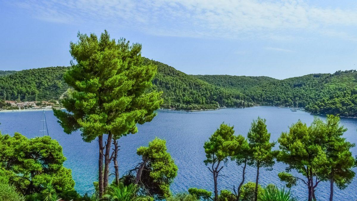 Bili smo iznenađeni zelenilom Skopelosa, a zelenilo se verovatno iznenadilo kada je videlo nas