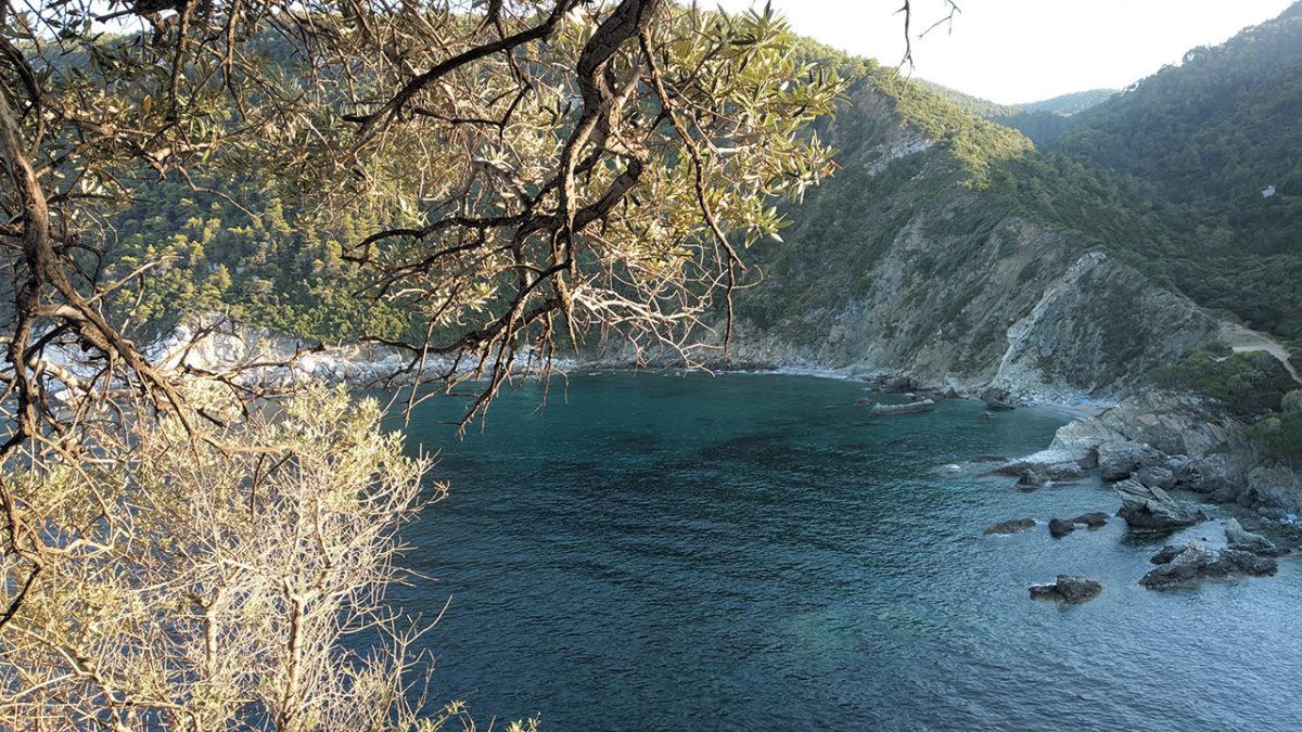 Obala Skopelosa