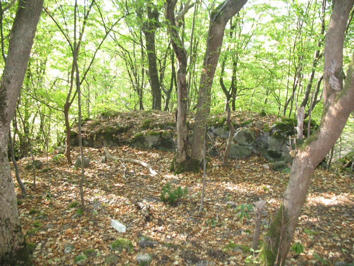 Ostaci srednjovekovnog utvrđenja Borač, foto: Crni Bombarder / Wikimedia