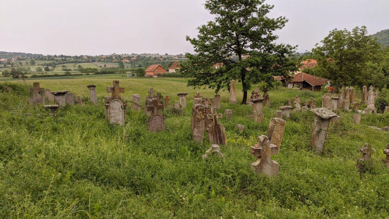 Iako je staro groblje u Borču zaštićeno kao nepokretno kulturno dobro, o njemu se ne vodi previše računa i kroz njega se sa teškom mukom može proći, foto: Uroš Nedeljković
