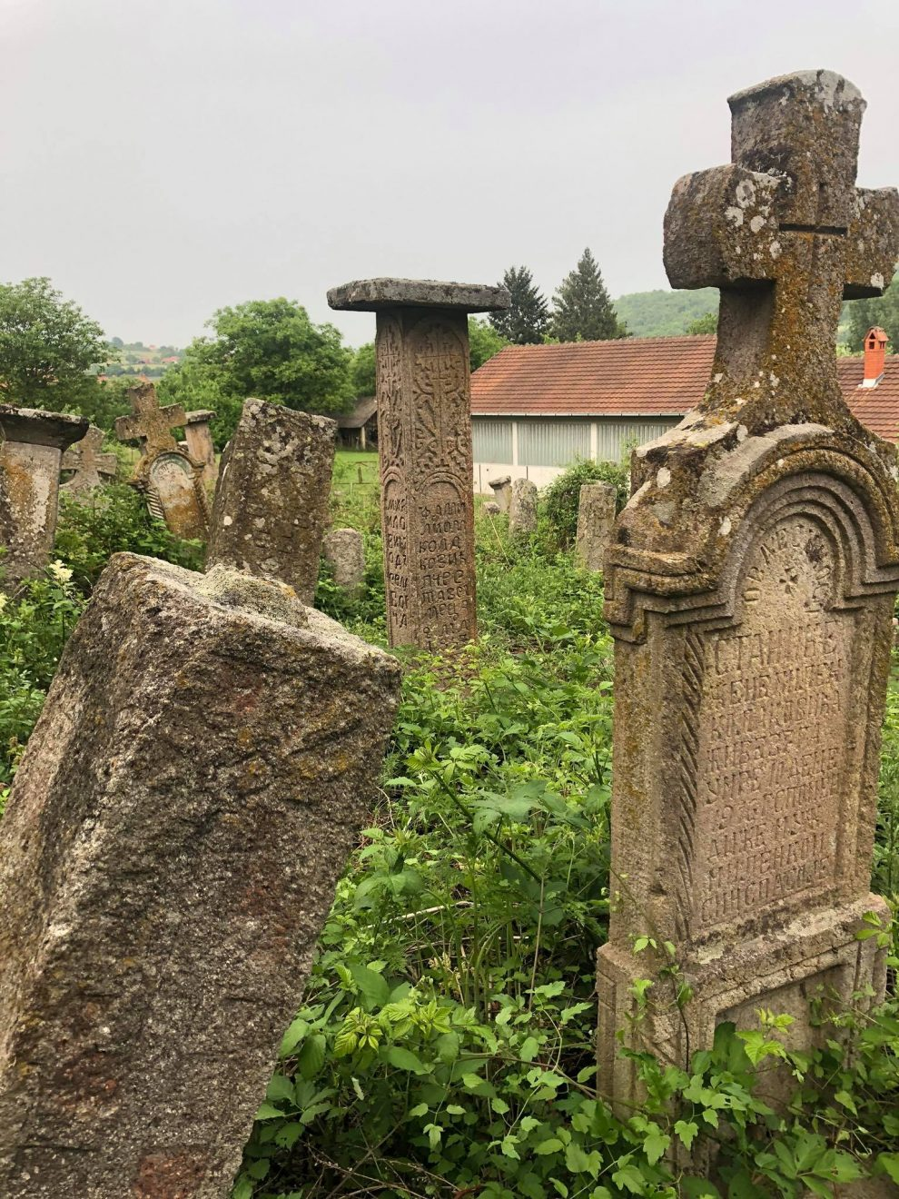 Ovo drevno groblje u selu Borač čini jedinstvenu celinu jer na njemu nema novijih spomenika od mermera koji se nalaze na novom groblju kojih stotinu metara dalje. Foto: Katarina Glomazić