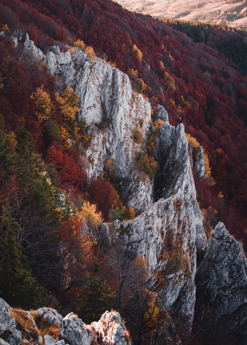 Planina Mučanj, Autor: Milena Popović