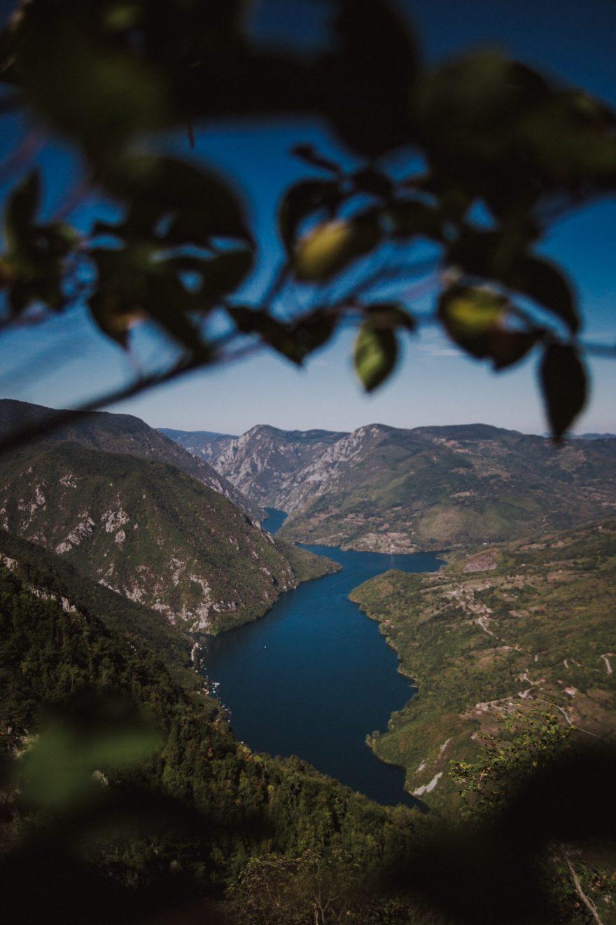 Planina Tara, Autor: Milena Popović