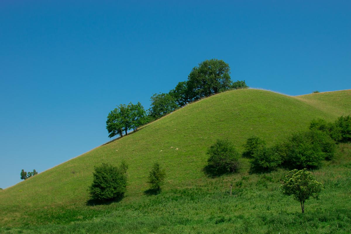 Zagajička brda, može i kao volpejper - foto: Tanja Tepavac