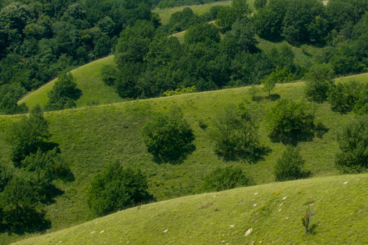 Zagajička brda, foto: Tanja Tepavac