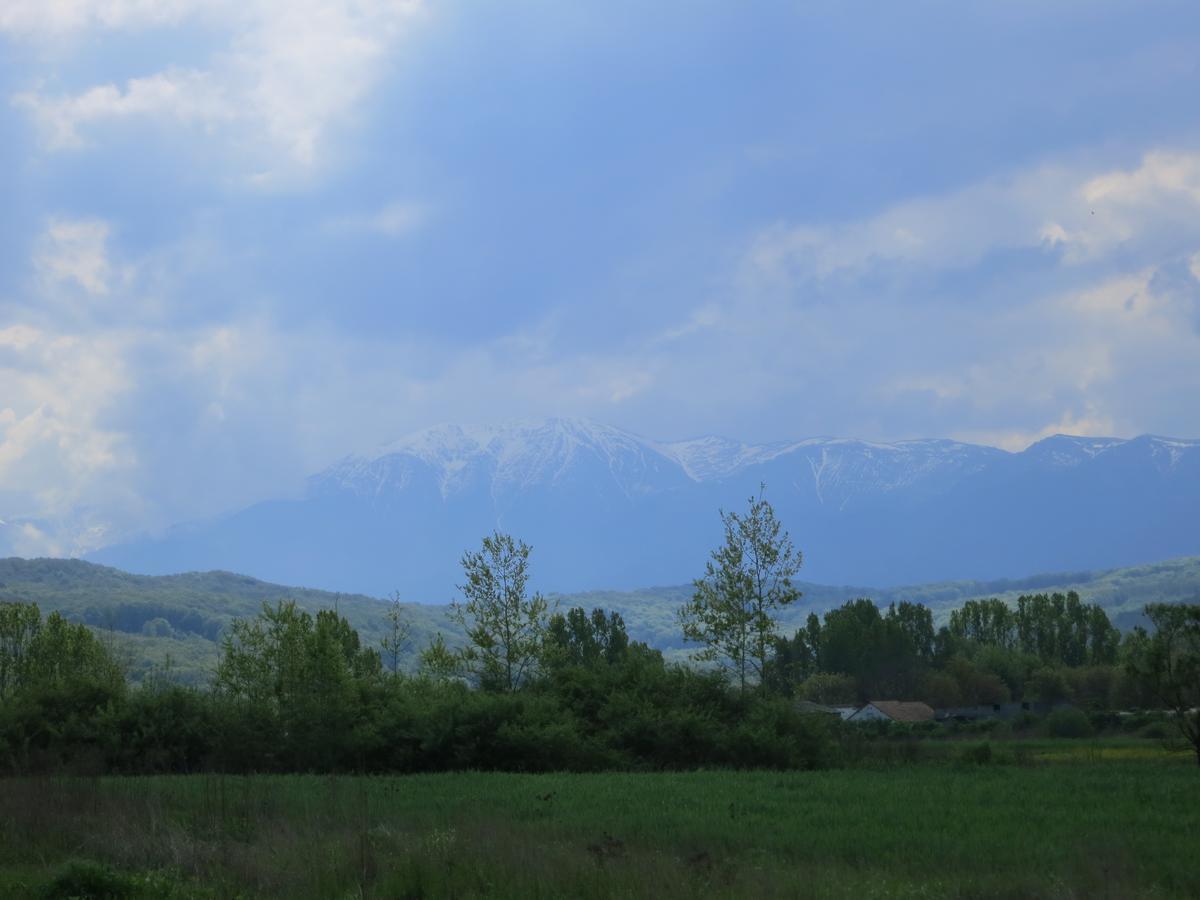 Dok vozite ravnicom iz pravca Srbije sa vaše desne strane se polako uzdižu Karpati i Fagaraške planine koje su najviše planine južnih Karpata. Najviši vrh je Moldoveanu sa 2544 metara nadmorske visine. Foto: Uroš Nedeljković