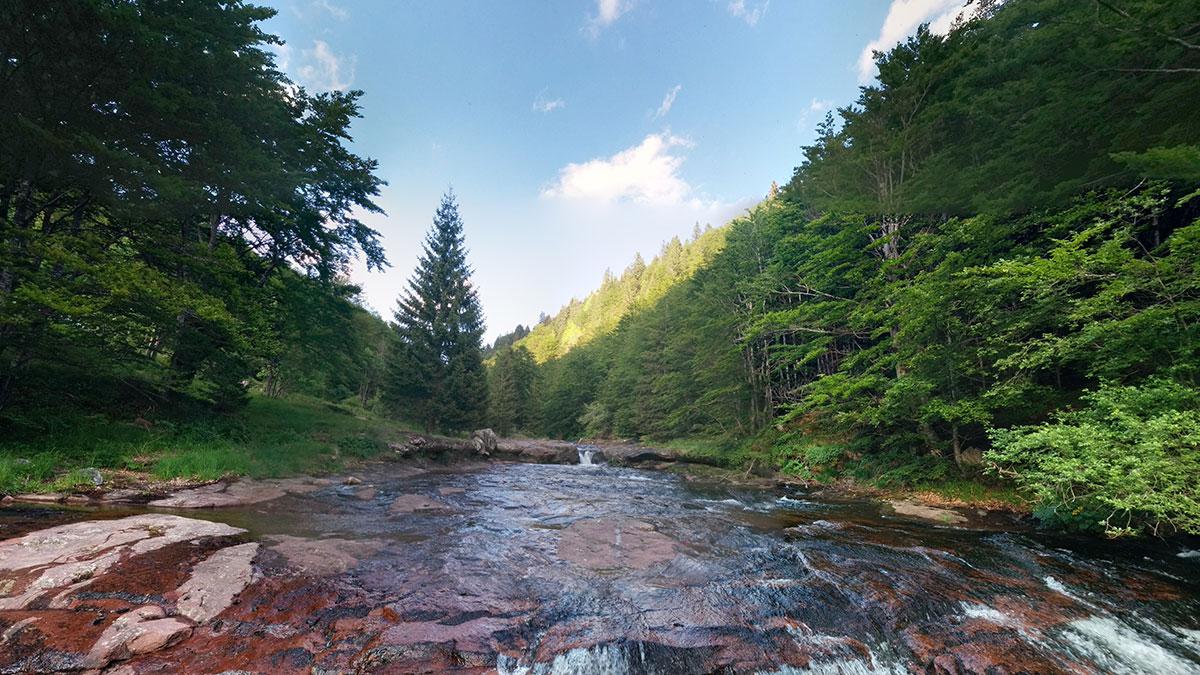 Dojkinačka reka u Arbinju na Staroj planina, foto: Uroš Nedeljković