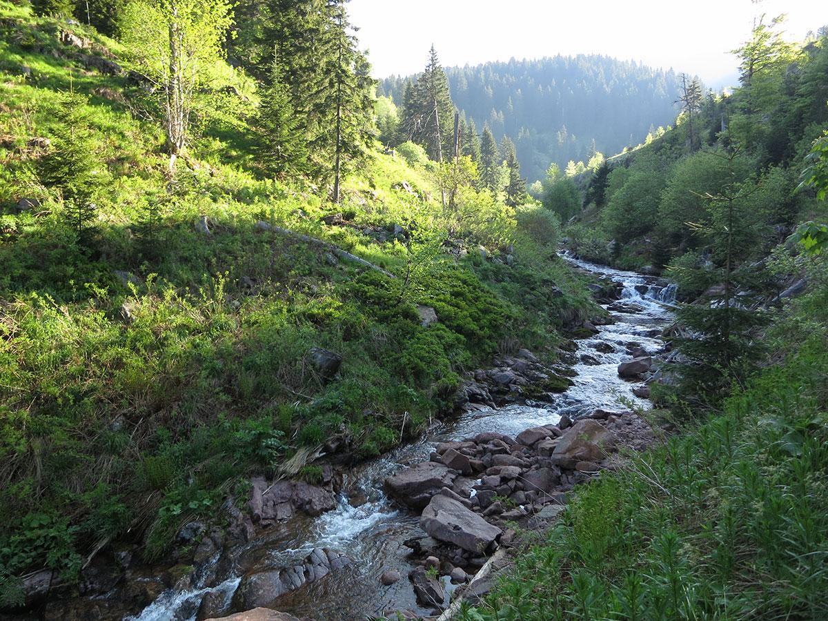 Dojkinačka reka