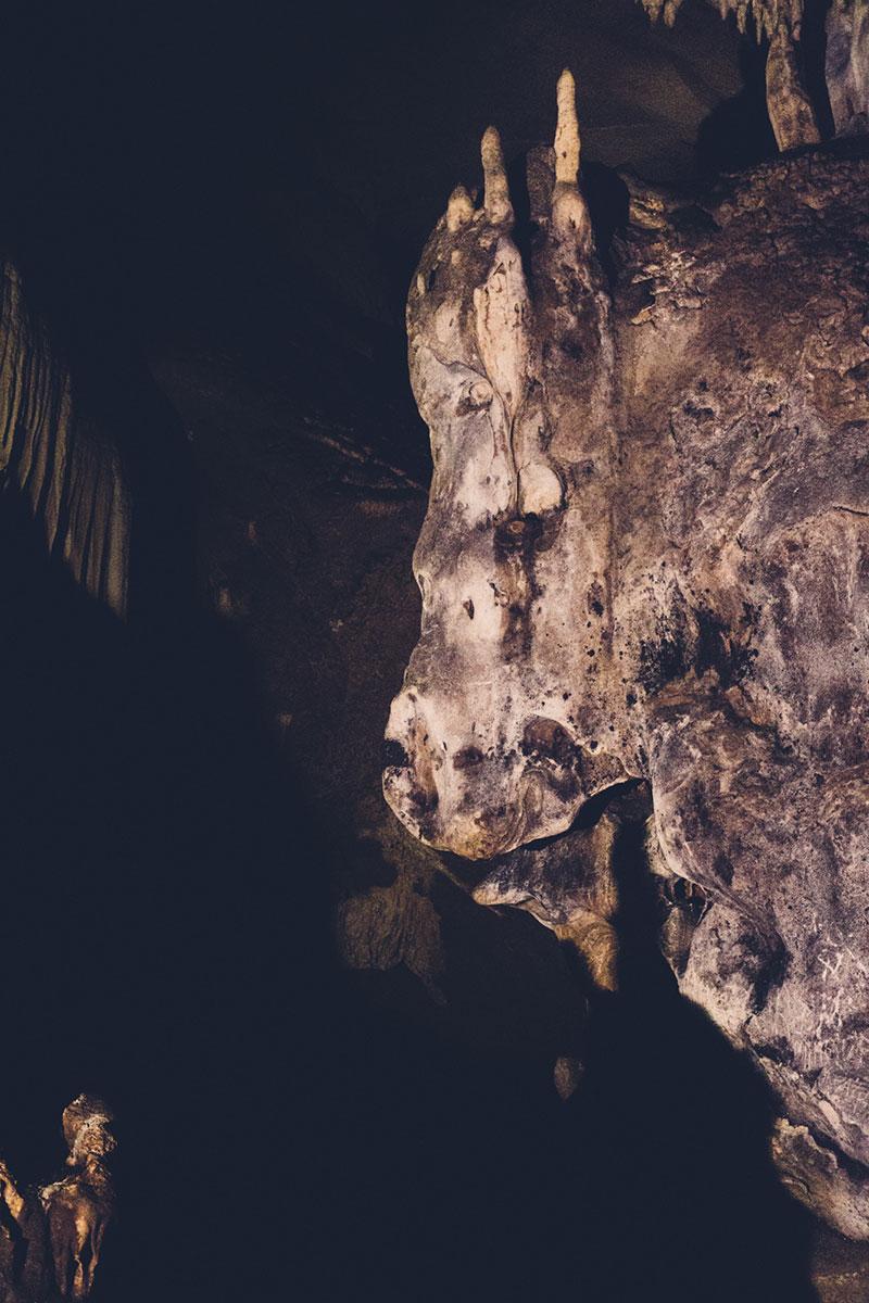 Bizon u Lazarevoj pećini, ali samo kao pećinski ukras. Foto: Strahinja Todorović
