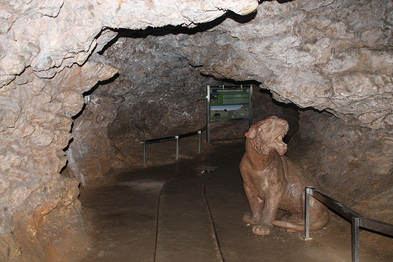 Bio jednom jedan pećinski lav. Kakav lav? Strašan lav i to iz Risovače. Foto: Vanilica / Wikimedia