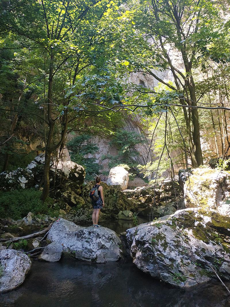 Kroz reku Vratnu se od Male prerasti može doći do Velike, foto: Jelena Ožegović