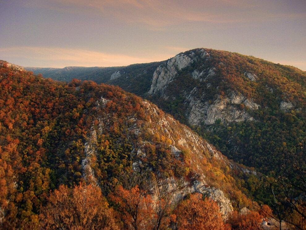Kučajske planine