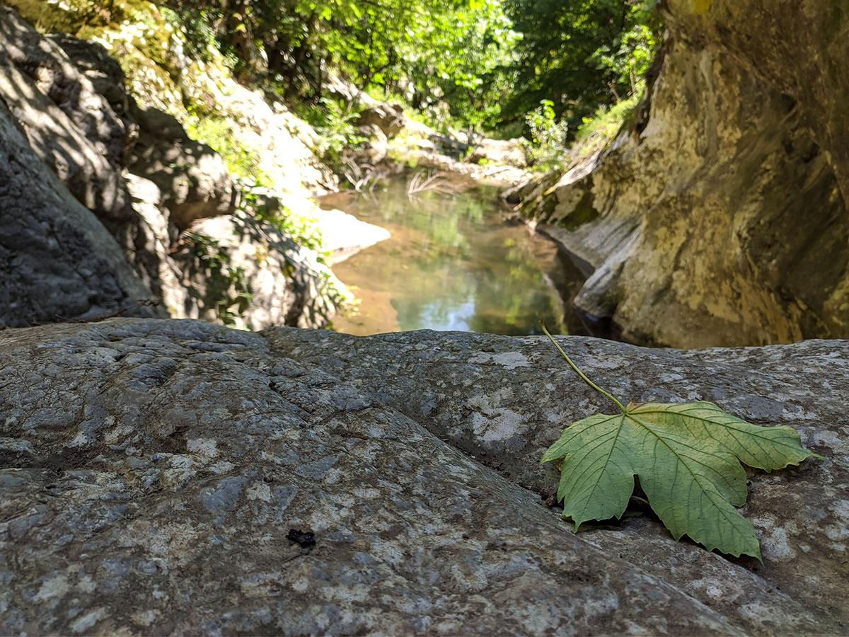 Reka Vratna, koja pored tri prerasti obiluje biljnim i životinjskom svetom, foto: Uroš Nedeljković
