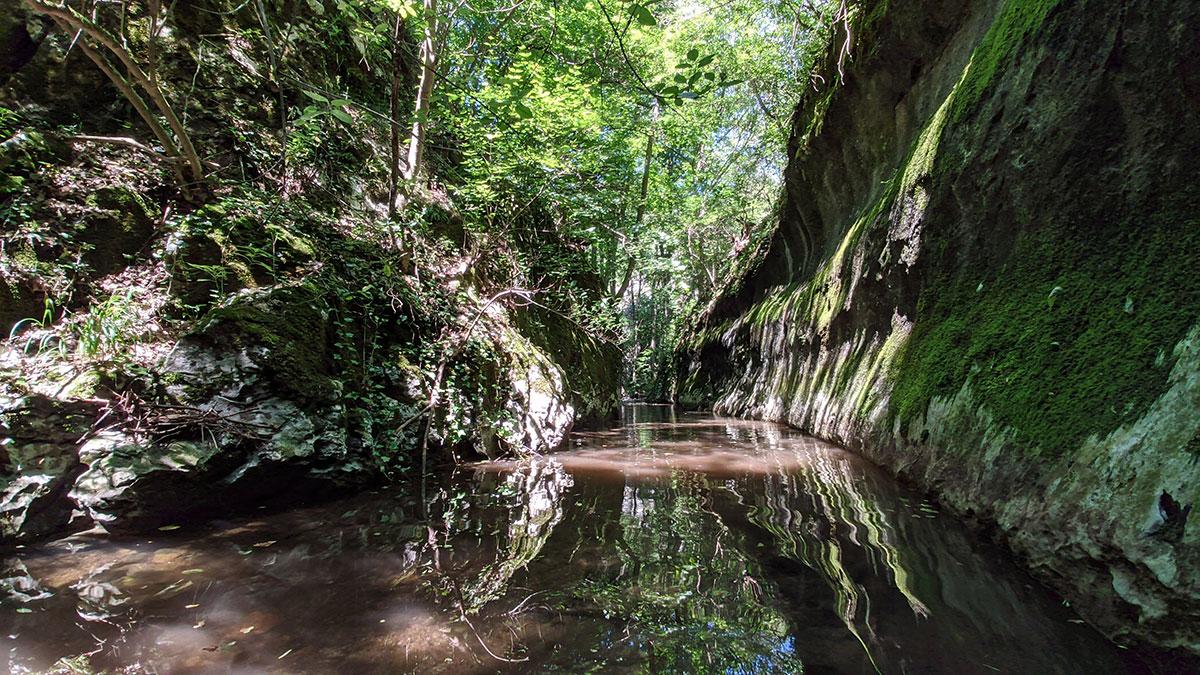 Budite spremni da gazite po vodi ukoliko želite da istražite Rajsku prerast. Foto: Uroš Nedeljković