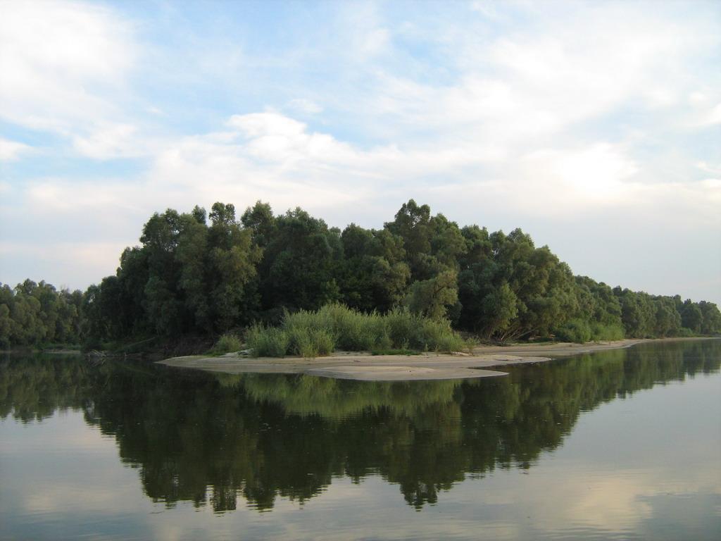 Rezervat prirode Gornje Podunavlje