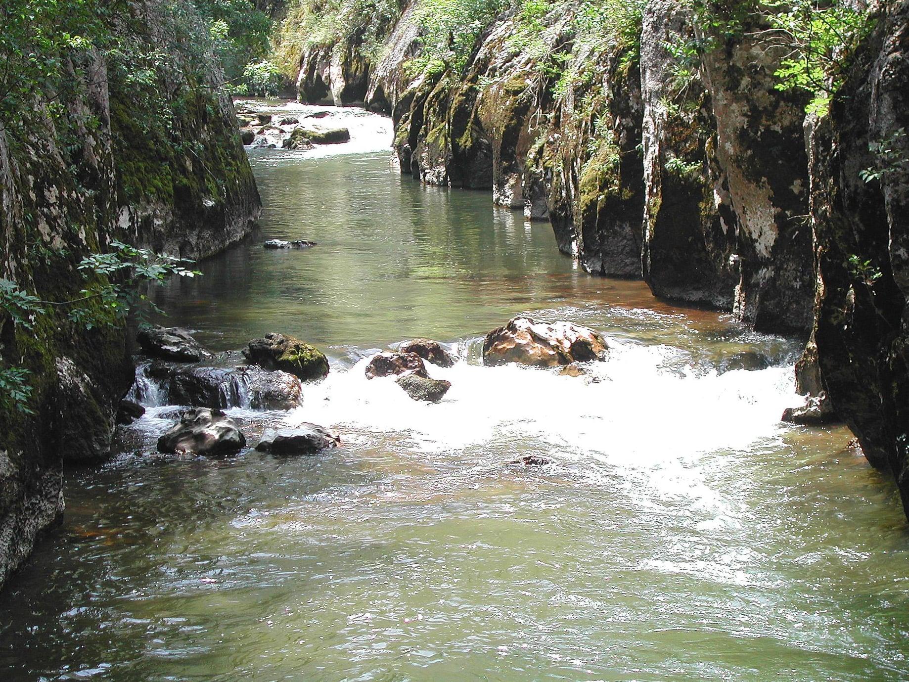 Reka Visočica, foto: Aleksandar Panić, ORSP