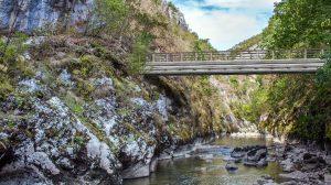 Planinoarsko pešački mist Vladikina ploča preko reke Visočice, foto:Aleksandar Panić / ORSP